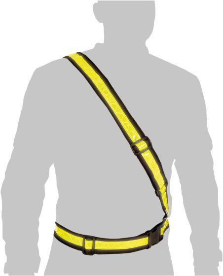 Oxford Bright Belt
